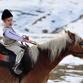 малката ездачка и гооолемия кон