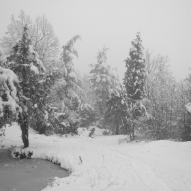 Снежно и спокойно