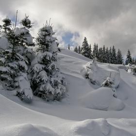Снежно 1