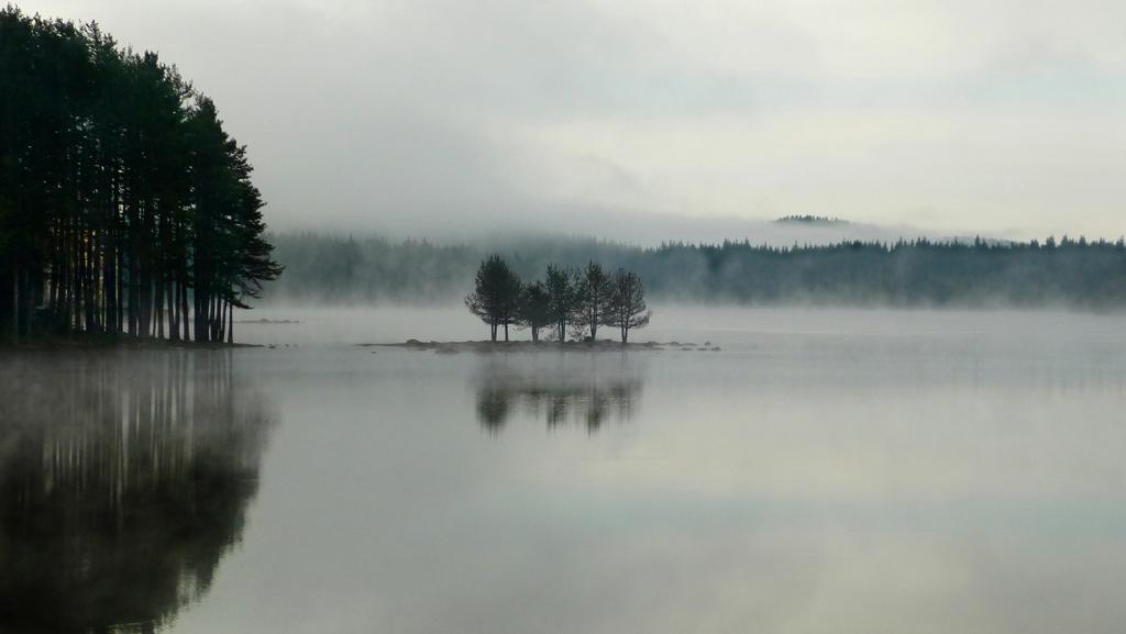 В мъгла