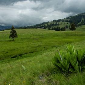 Рилски поляни с пролетни премяни