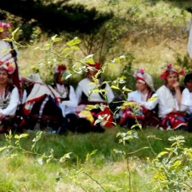 На поляните край Копривщица - 2010