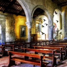 Църквата и гълъбите
