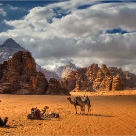 Полета, пълни с пустиня