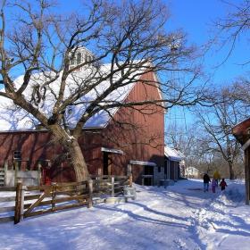Зиме на фермата 1