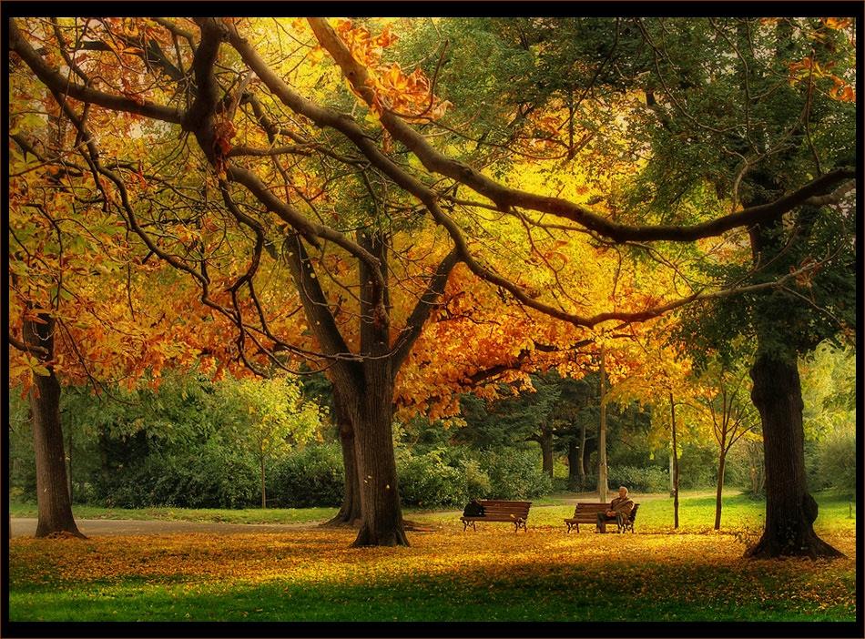 Среща с есента