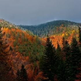 Пожарите на есента 1