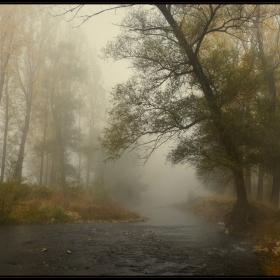 Есен край Искъра (8)
