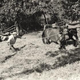 Вършитба  1969г.