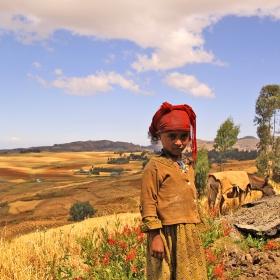 Обгорени от слънцето 1 (лица от Етиопия)