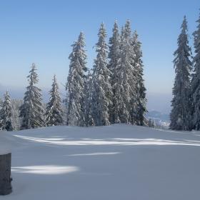 Снежно спокойствие!