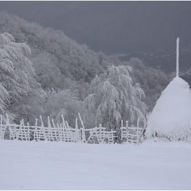 Тази зима е моят сезон-с леден чар и снежинки танцуващи