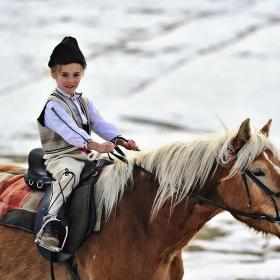 да хванеш коня за юздите