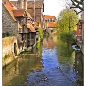 Там, където гъските плуват спокойно по каналите:)