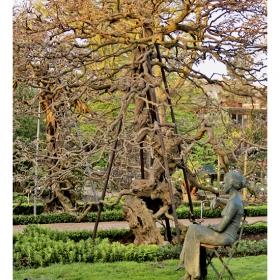 Дамата с дървото