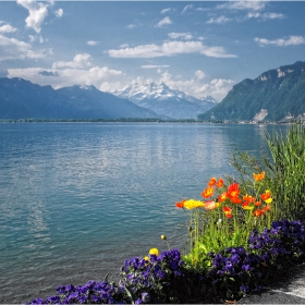 Монтрьо-Швейцария