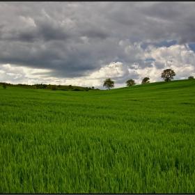 отново в зелено...