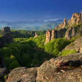 На скала в гора да те поставя, дето вятър даже не стои, на скалата ще поникне здравец..............