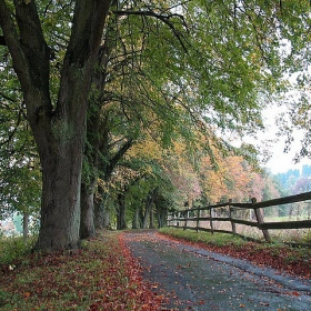 Есента на една романтичка