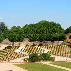 Градината на замъка Amboise