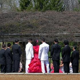 Композиция в черно,бяло и The Lady in Pink :)