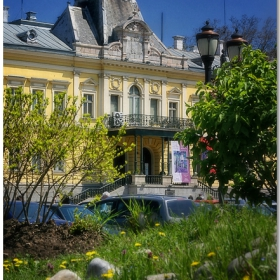 - Мигове край Двореца -