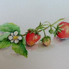3 ягодки
