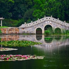 East Lake park- Wuhan (провинция Hubei)