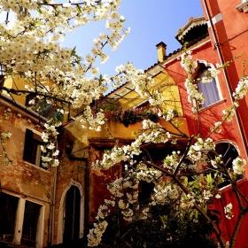 Гледки от Венеция- в тихия ъгъл