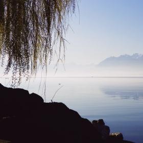 Събуждане край Женевското езеро