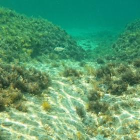 Под вода 3