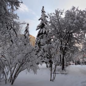 Зимен ден №2