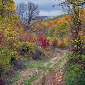 Есенно, по пътя към Живата вода...