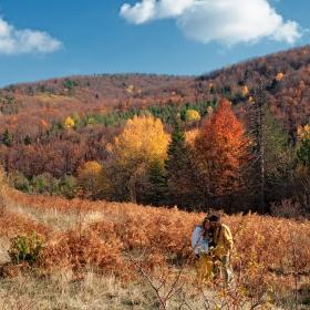 Есенна милувка