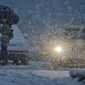 Честит първи сняг!!