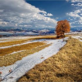 Логодаж - в края на зимата