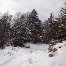 снежен поздрав за всички