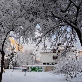 Снежен покрив