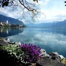 Изглед от  Женевското езеро