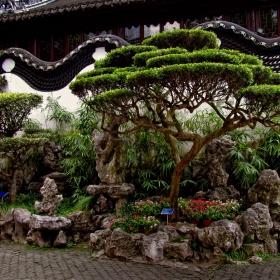 От райските градини!