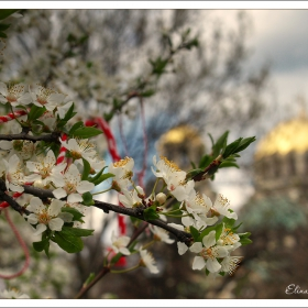 С аромат на пролет