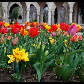 На Цветница в Балчик