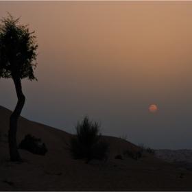 Пустинно...