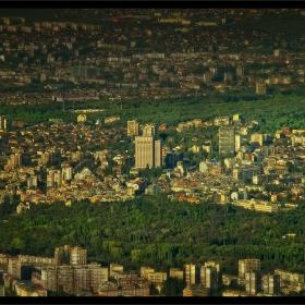 Зелените дробове на града