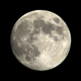 """В очакване на """"Синя Луна"""""""