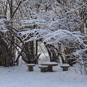 Зимно ... в парка