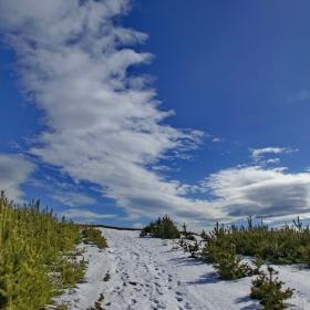 Към връх Гладни рид ...