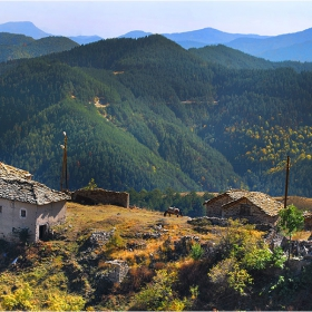 село Бор