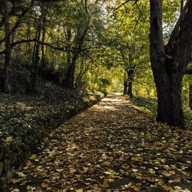 Есенно от Мадара