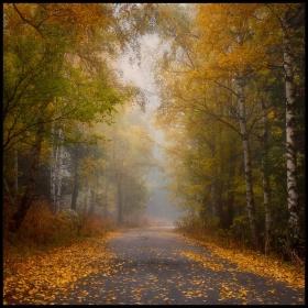 Есен есен,златна есен.